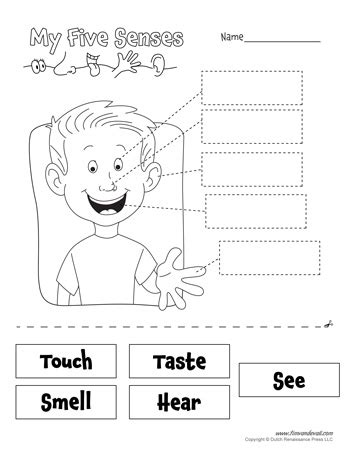 free coloring pages of five senses worksheet free five senses worksheets for kids 5 senses craft
