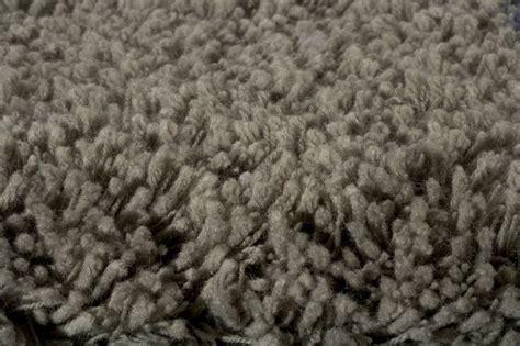 olive green shag rug olive green comfort shag rug rosenberryrooms