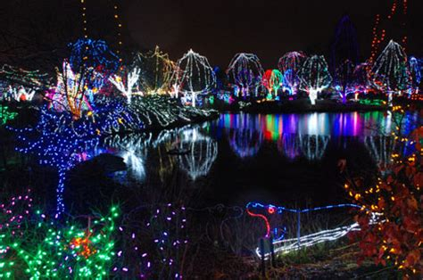 columbus zoo christmas lights 2014 christmas decore