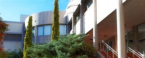 Flinders Mba by Flinders Business School Flinders