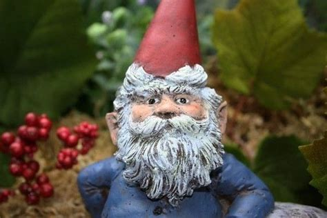 lawn gnomes cute bing images lawn gnomes cute bing images