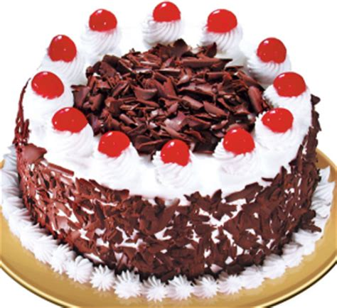 cara membuat kue bolu untuk ulang tahun cara membuat kue ulang tahun mudah spesial resepmembuat com