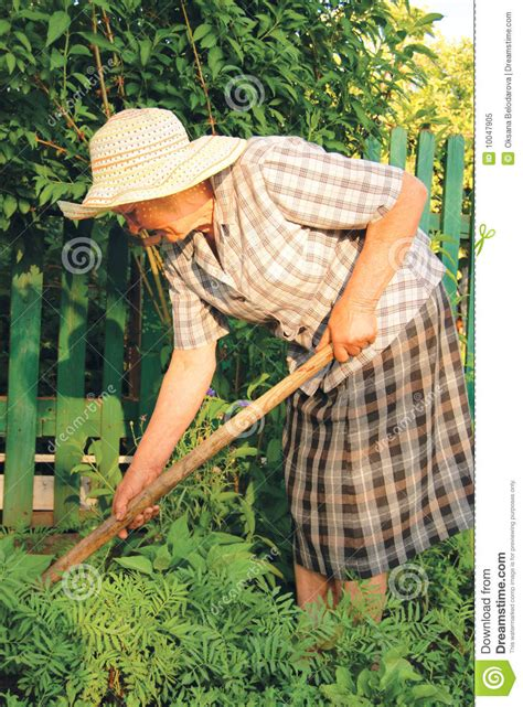 Is Working In The Garden by Working In The Garden Stock Image Image 10047905