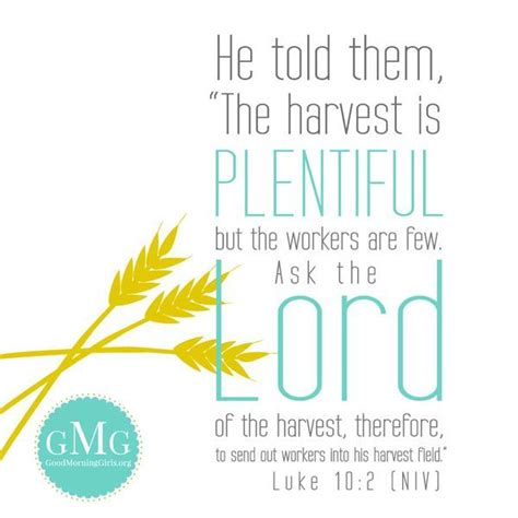 the harvest is plentiful but the workers are few the harvest is plentiful but the workers are few city
