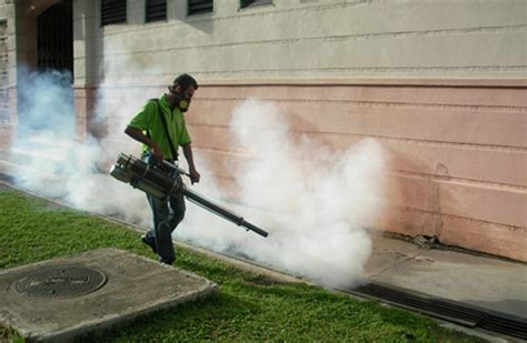 how much does it cost to fumigate a house how much does it cost to fumigate a house 28 images cost of termite fumigation