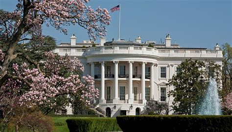 trump white house residence trump bans brits from the white house newshub