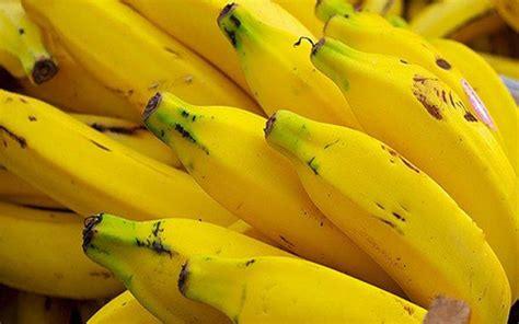 alimentos ricos en tript fano y serotonina tript 243 fano alimentos que dan felicidad