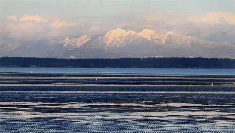 Vancouver Landscape Pictures Boundary Bay Vancouver Landscape Photograph By