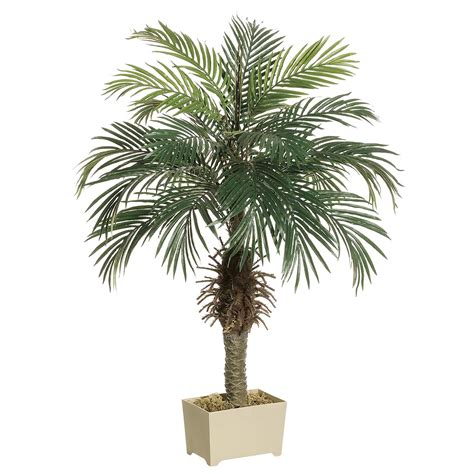 Decorative Palm Trees by 3 5 Foot Palm Tree In Decorative Pot Lpp504