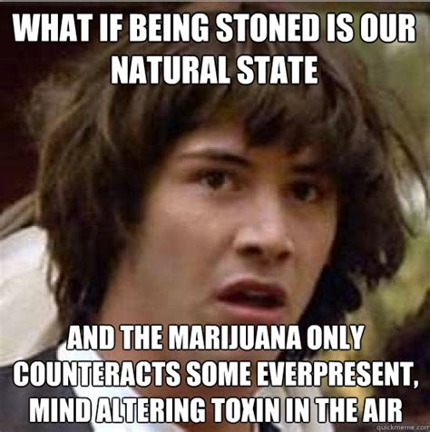 Funny Stoner Memes - conspiracy keanu weed conspiracy