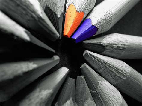 are black and white colors orange and blue color pencil selective color photography
