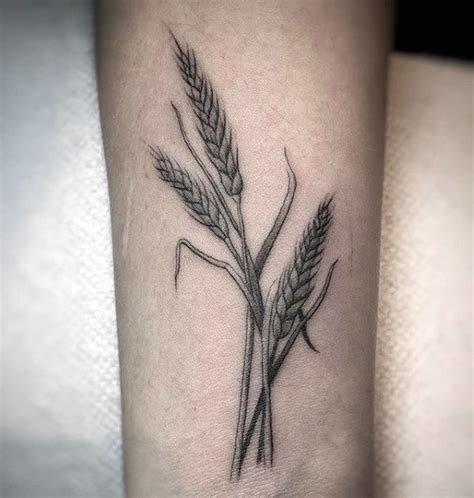 50 wheat tattoo designs for men cool crop ink ideas