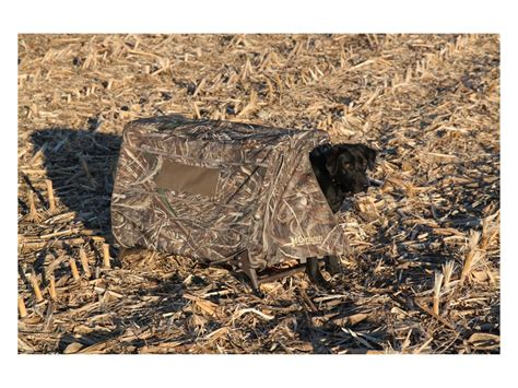 elevated alt in dogs momarsh fieldhouse orthopedic elevated blind realtree max 5 camo