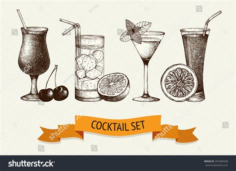 vintage cocktail vector vector set vintage cocktails berries fruits stock vector