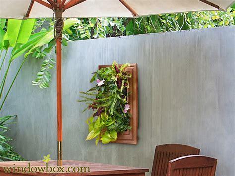 Water Collector For Indoor Living Wall Planter Vertical Indoor Wall Garden Kits