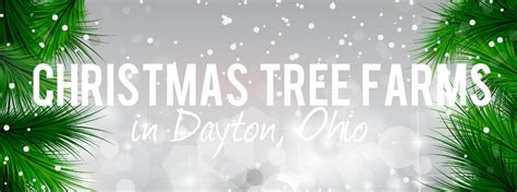 where can i get a christmas tree in dayton