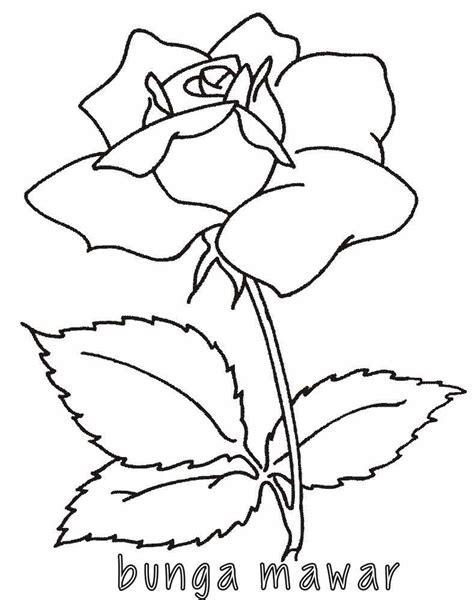 contoh gambar mewarnai tanaman coloringpagesasia