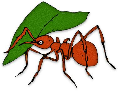 ant eating cliparts   clip art  clip art  clipart library