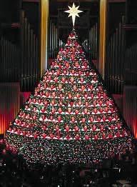 187 living christmas tree
