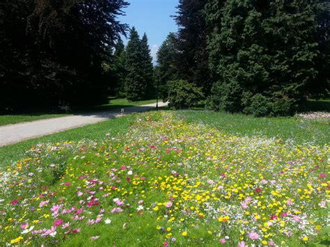grandi giardini d italia grandi giardini italiani villa necchi ciglio