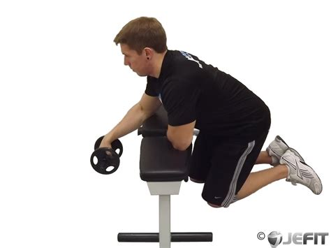 reverse wrist curl over bench forearms brachioradialis exercise database jefit
