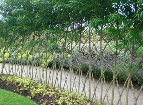 Garden Of Osage Living Fences How To Make A Living Fence For Your Garden