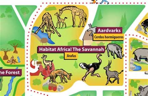 africa zoo map chicago zoological society habitat africa the