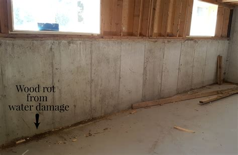 spray foam insulation basement walls foam insulation basement walls home design