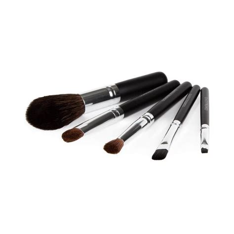 Authentic Coastal Scents Brush Shoo Sigma Sigma Color Pop Brush Kit Myqt Au