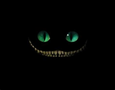 cheshire cat smile chesire cat grin