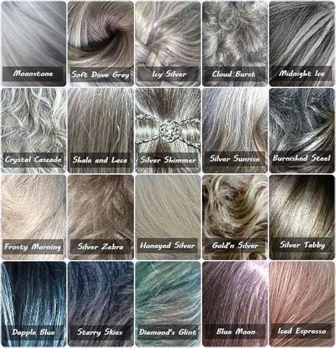 type 3 and gray hair gray color chart because not all gray hair is the same