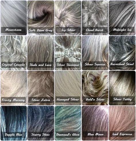 gray hair color shades best 25 gray hair ideas on gray silver hair