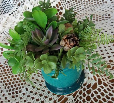 low light succulents beautiful succulents ferns and stones in a turquoise blue