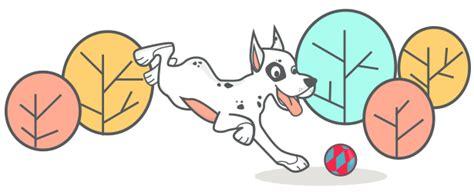 daycare portland maine doggie daycare boarding in portland maine happy tails