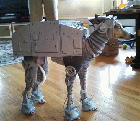 best dog houses ever pet costumes for halloween cute and clever no dog