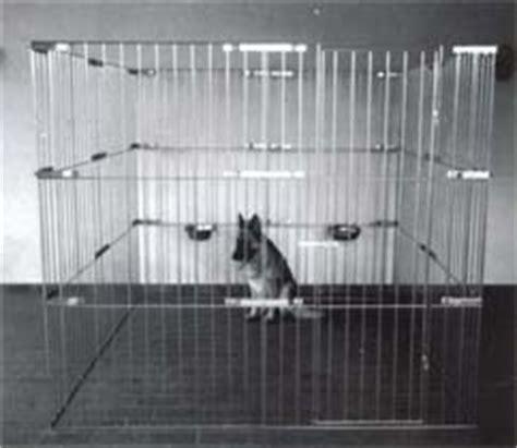 recinti per cuccioli blackhairstylecuts com recinti componibili per cani