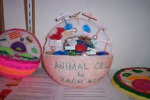 3d project 3d plant cell project ideas for kids science project