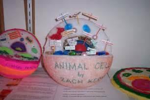 Sample cell models