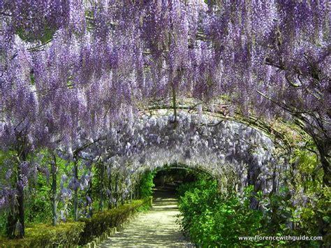 arte e giardino ville e giardini a firenze e dintorni florence with guide