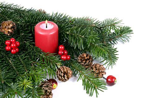 weihnachtsbaum lieferservice tannenbaum hamburg lieferservice weihnachtsbaumschlagen
