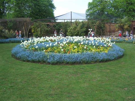 aiuole giardino immagini aiuole giardini crea giardino quali aiuole per giardino