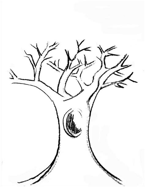 coloring pictures of tree trunks tree trunk printable drawing coloring pages