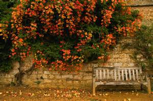 Companion Bench Early Autumn Flickr Photo Sharing