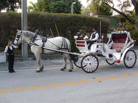 buggy wagen and carriage rides winning weddings s