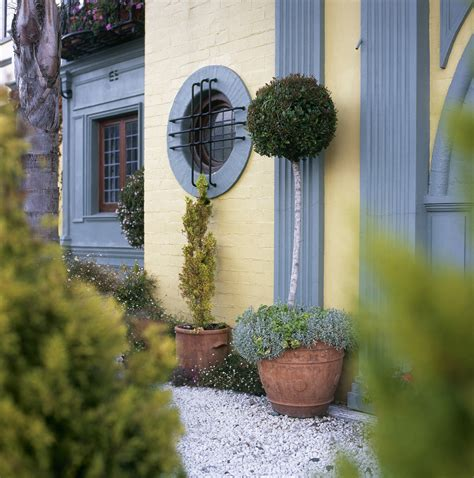 topiary basing topiary style a dash of manicured charm