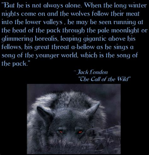 theme quotes from call of the wild call of the wild quotes quotesgram