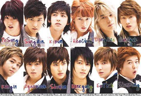Suju Graphics 4 k pop fever junior