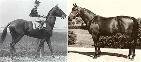 How Much Money Did Secretariat Win - famous horses and their famous owners ever until 2017 top 10 list