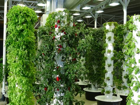 Vertical Aeroponic Garden O Hare Airport S Vertical Aeroponic Garden Takes Flight