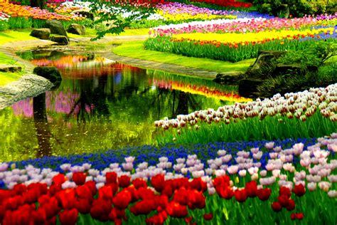 beautiful spring pictures central park spring wallpaper wallpapersafari